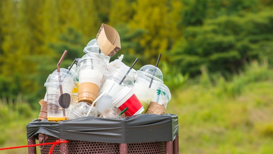Berkeley, Calif. is seeking to charge for all takeout containers in an effort to cut back on plastic waste.