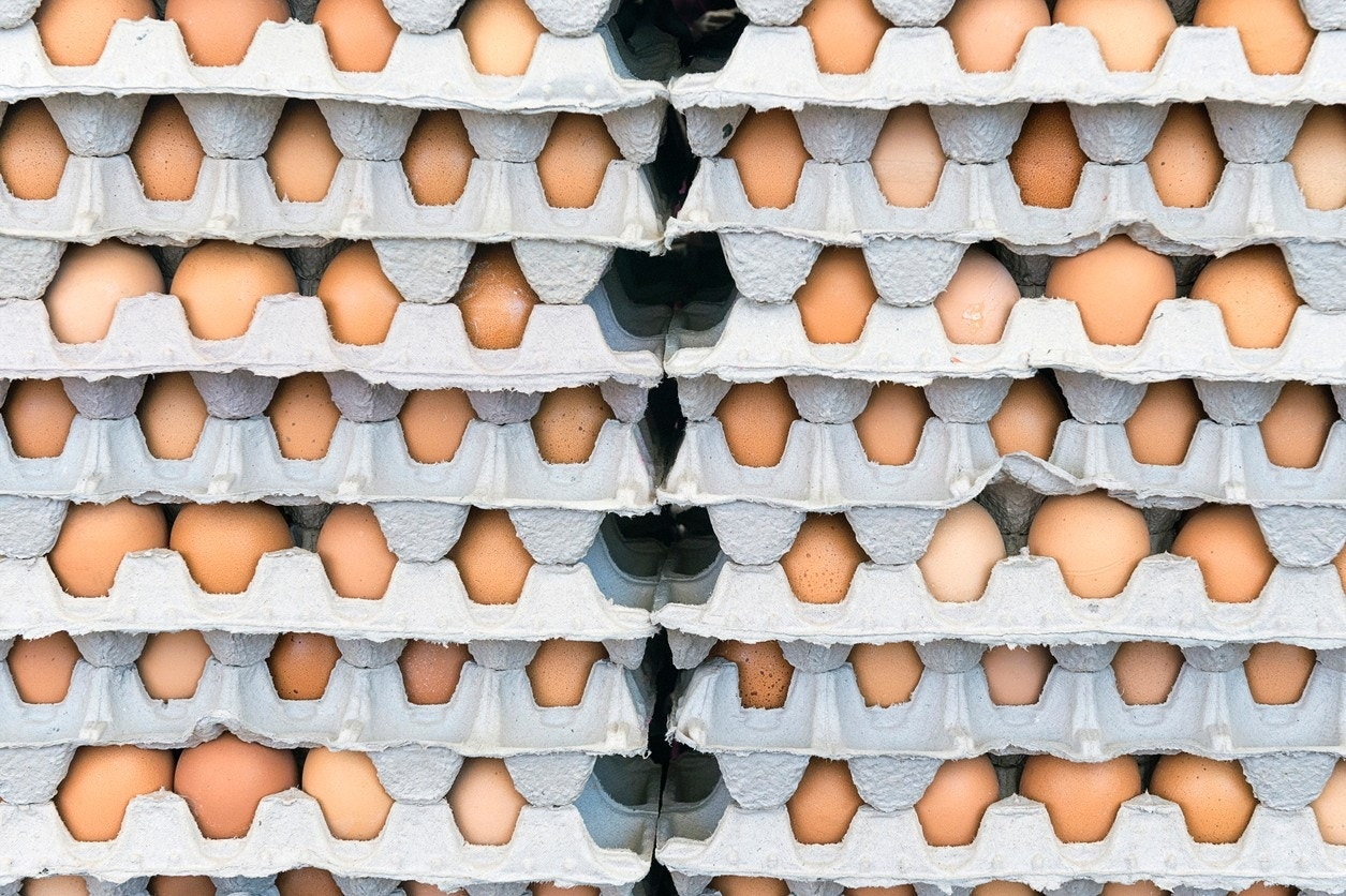 Nutrition journal suggests new guidelines for egg consumption