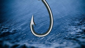 fish hook ap