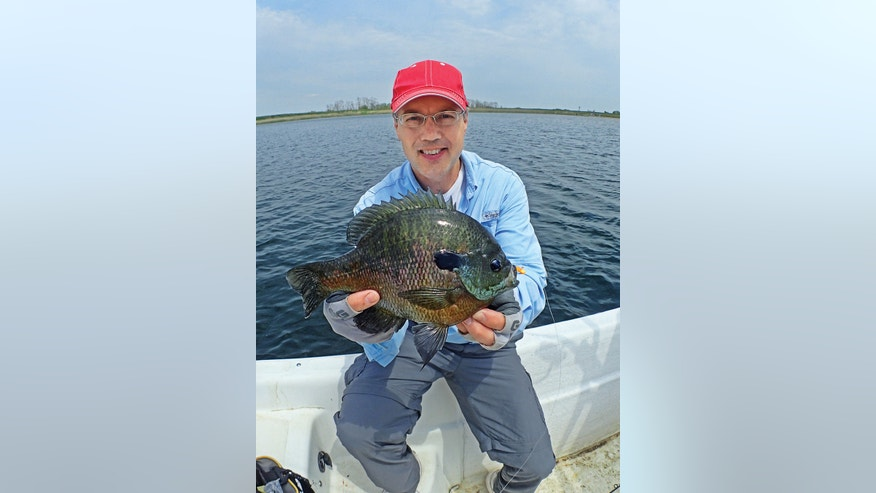 This 2-pound bluegill could be yours with the right equipment and a little patience.