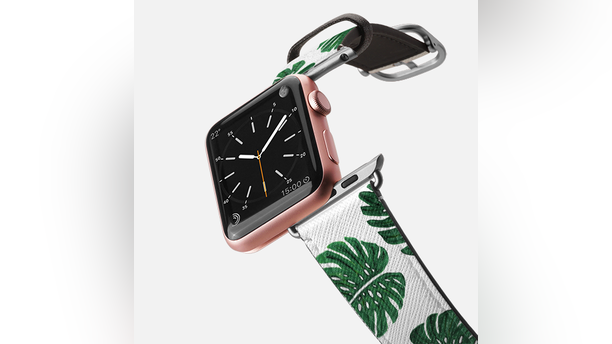 watch band casetify