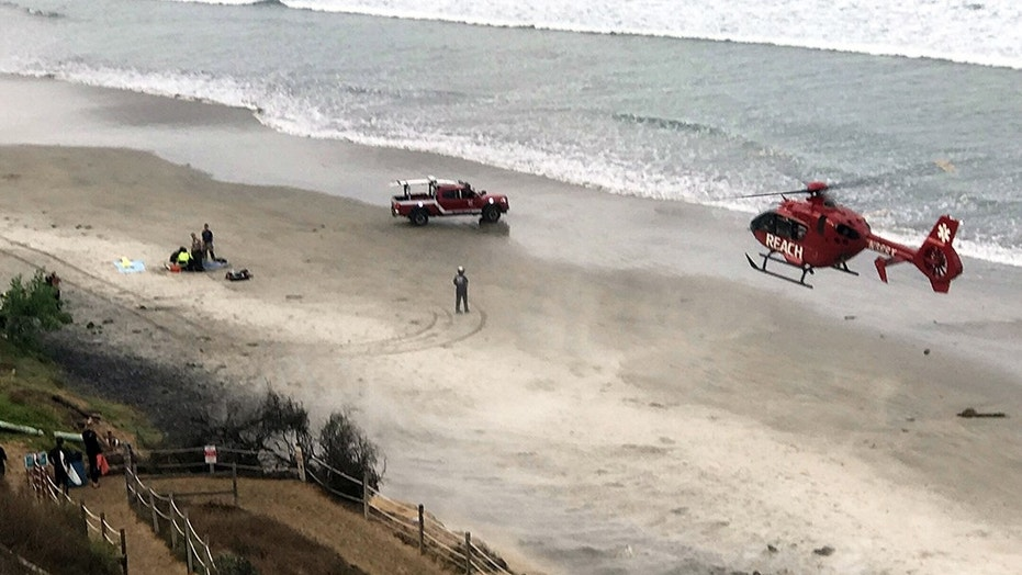 Boy, 13, attacked by shark in California while diving for lobsters