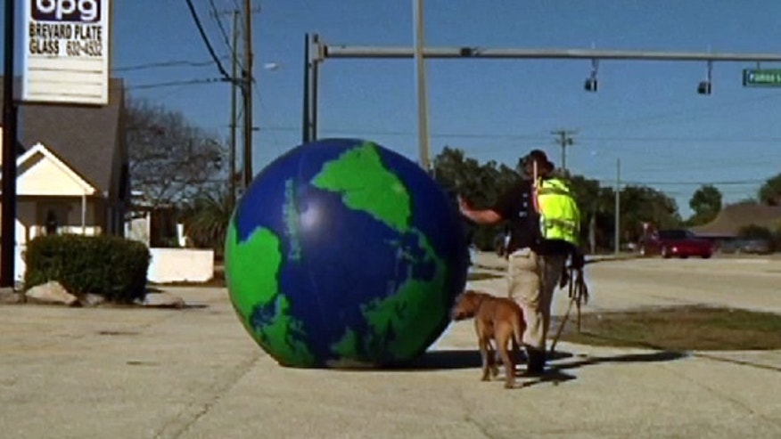 In this Jan. 26, 2011 image made from video, Erik Bendl of Kentucky, rolls a giant globe through Cocoa, Fla. Bendl is walking around the U.S. with his dog, Nice, to raise awareness of diabetes.