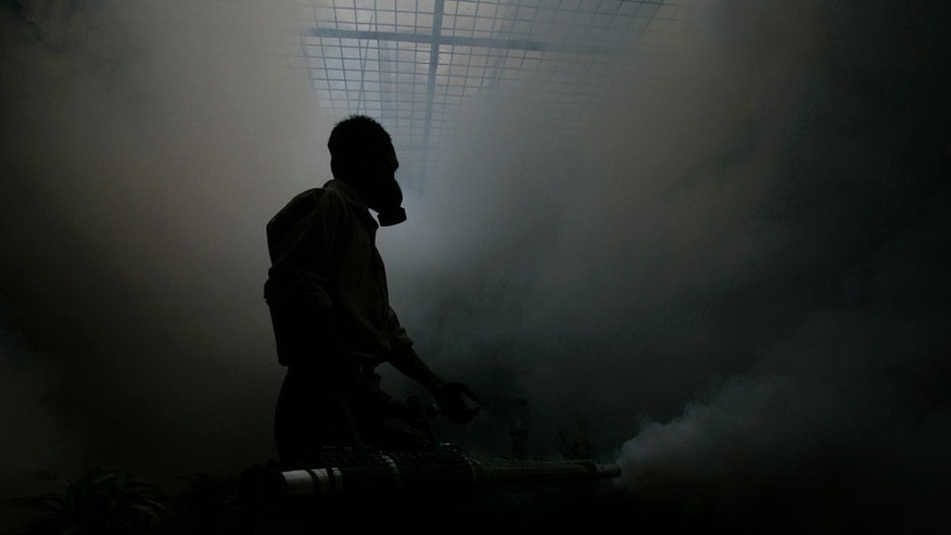 JAKARTA, INDONESIA - APRIL 12: An Indonesian man fumigates a yard to expel Dengue Fever carrying mosquitoes during an outbreak of the tropical disease, on April 12, 2007 in Capital City Jakarta, Indonesia. Governor Sutiyoso of Jakarta has declared the outbreak an 'extraordinary occurrence' with more than 11,000 people infected and at least 41 dead. (Photo by Dimas Ardian/Getty Images)