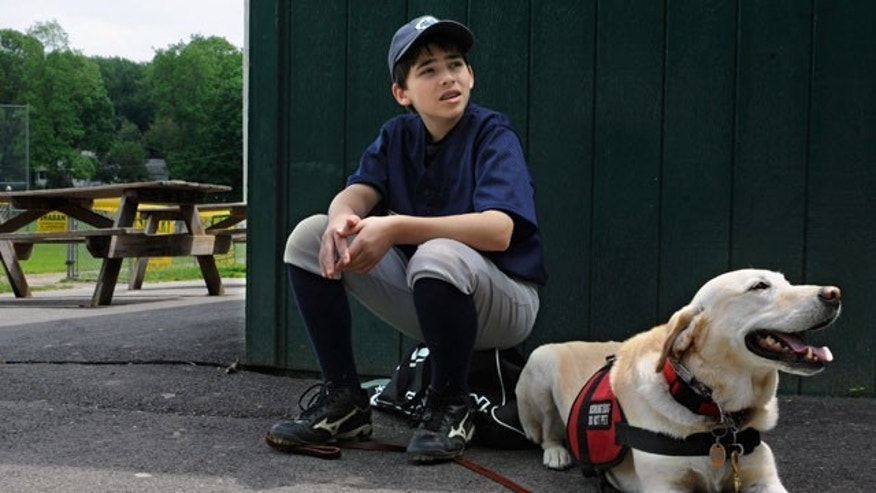 May 29: Jeff Glazer waits with his allergy-sniffing dog, Riley, to sweep a ball field before his game in Middlebury, Conn. Riley accompanies Glazer to ensure there are no peanut products or residue that could trigger his life-threatening allergic reactions.