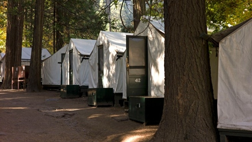 In this photo from Sunday Oct. 23, 2011, tents are seen in Curry Village in Yosemite National Park, Calif. A man died and a woman became seriously ill after contracting a rare rodent-borne disease that might have been linked to their stay at this popular lodging area in Yosemite National Park, officials said Thursday. The man was the first person to die from hantavirus pulmonary syndrome contracted in the park, though two others were stricken in a more remote area in 2000 and 2010, officials said. Testing by the Centers for Disease Control and the California Department of Public Health showed the virus was present in fecal matter from deer mice trapped in Curry Village, an historic, family friendly area of cabins. (AP Photo/Ben Margot)