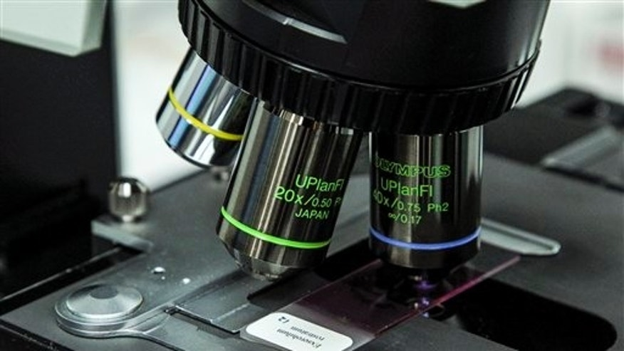 A close-up view of a microscope taking a look at a meningitis slide.