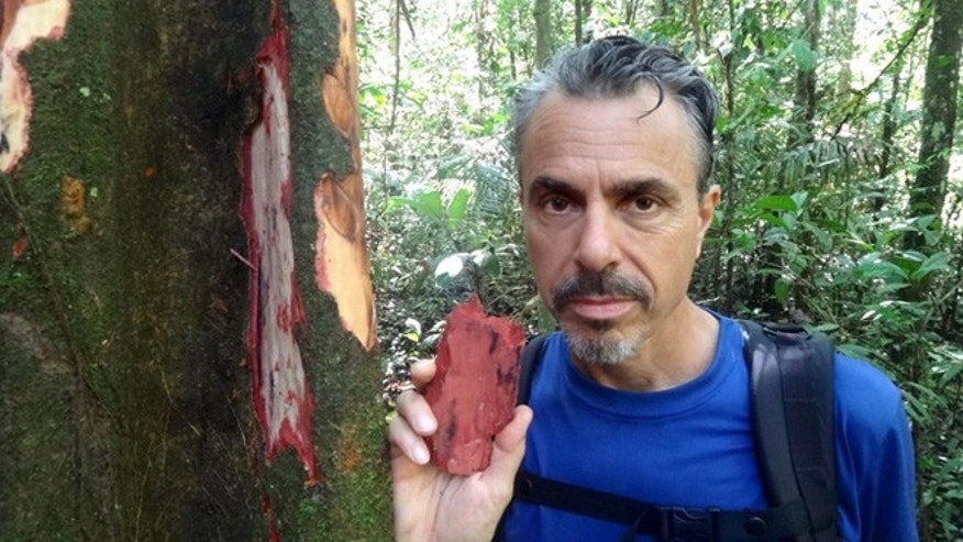 Chris Kilham holds up a piece of bark from the Chuchuhuasi tree.