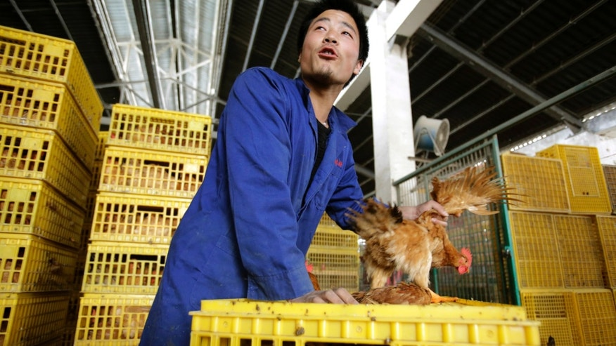 A worker unloads a chicken from a container at a wholesale market in Shanghai, China.