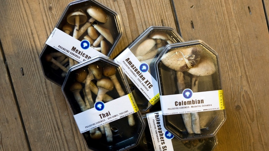 Boxes containing magic mushrooms are displayed at a coffee and smart shop in Rotterdam in the Netherlands.