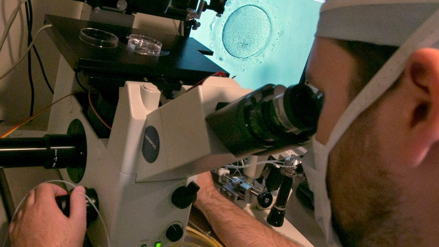 Embryologist Rick Slifkin uses a microscope to view an embryo, visible on a monitor, right, at Reproductive Medicine Associates of New York, in New York. (AP Photo/Richard Drew)