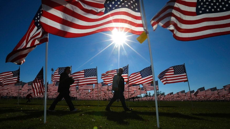 A couple walks through some of the two thousand and thirteen United States flags, that are part of the Aurora Healing Fields to honor veterans, during Veterans Day weekend in Aurora, Illinois November 10, 2013. (REUTERS/Jeff Haynes)