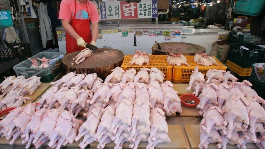 Chickens are displayed for sale at a chicken store in Seoul April 17, 2008. South Korea said on Thursday it had culled three million farmed birds and was probing seven fresh cases of suspected bird flu, as the country grapples with its worst avian influenza outbreak in four years.  REUTERS/Jo Yong-Hak