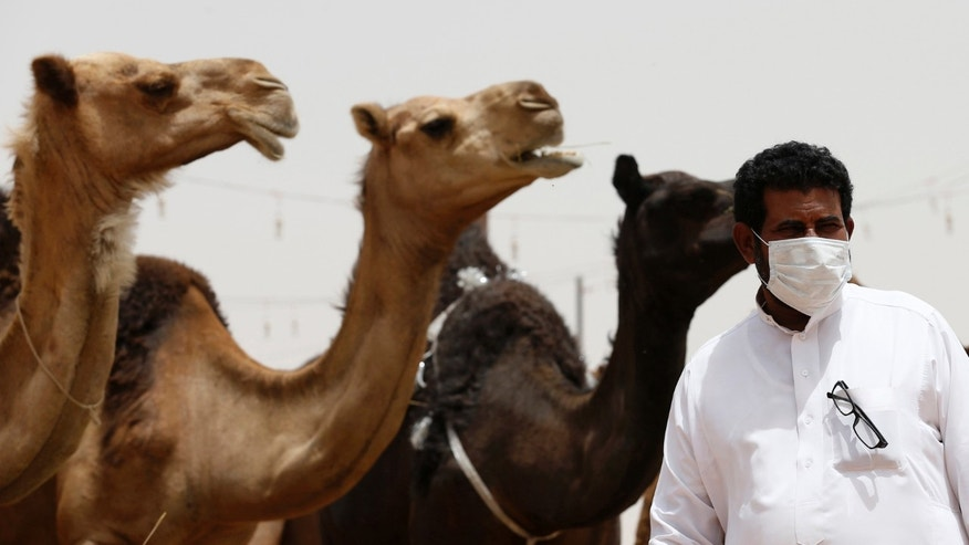 A man wearing a mask looks on as he stands in front of camels at a camel market in the village of al-Thamama near Riyadh May 11, 2014. (REUTERS/Faisal Al Nasser)