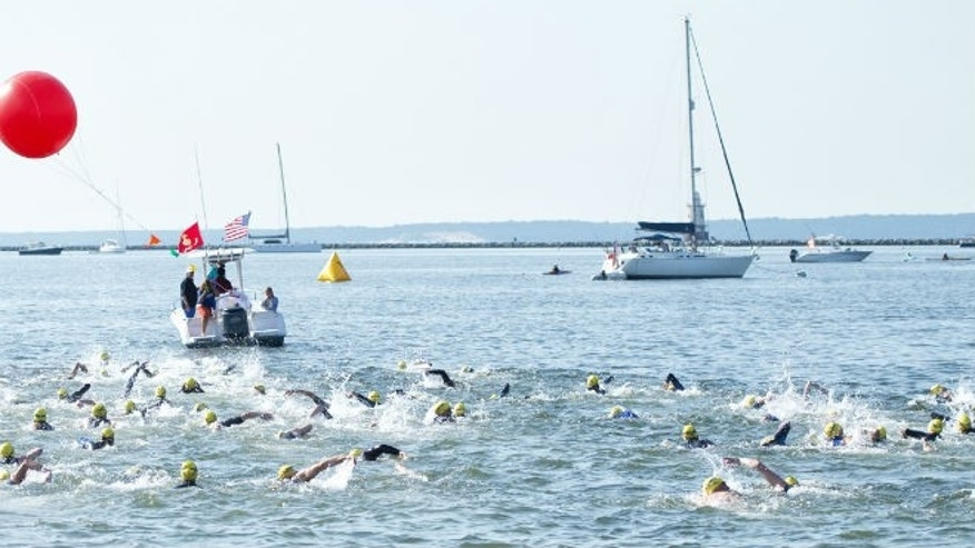 Swimmers during Swim Across America's 2013 Greenwich event.