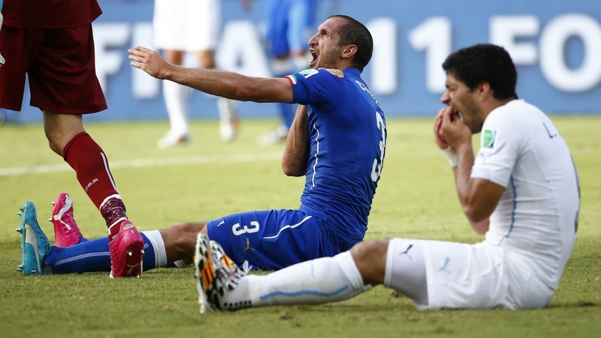 Uruguay's Luis Suarez (R) reacts after clashing with Italy's Giorgio Chiellini during their 2014 World Cup Group D soccer match at the Dunas arena in Natal.