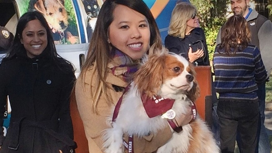 Nov. 1: Ebola survivor Nina Pham is reunited with her dog Bentley at the Dallas Animal Services Center in Dallas.