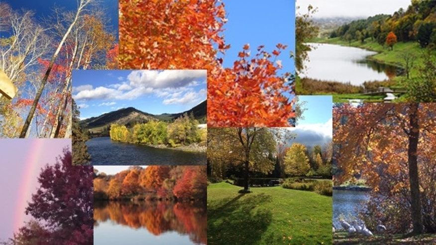 A collage of photos sent in by Noreen's readers shows beautiful fall scenes from around the country.
