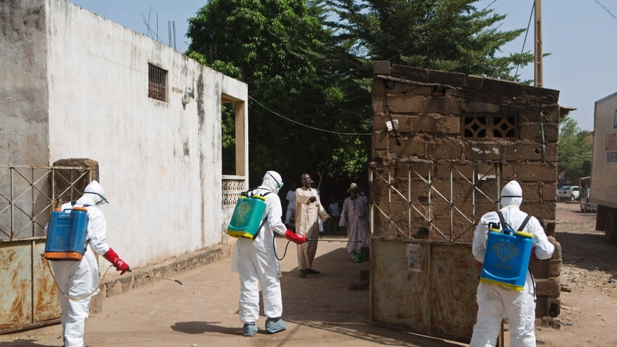 Health workers spray disinfectant at a mosque, in Bamako November 14, 2014. REUTERS/Joe Penney