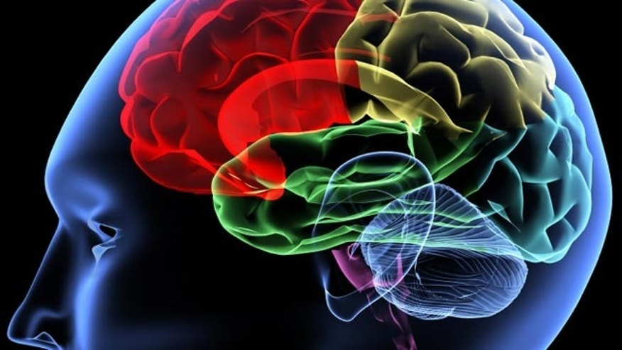 What are some major research topics in the field of neuroscience and psych disorders?