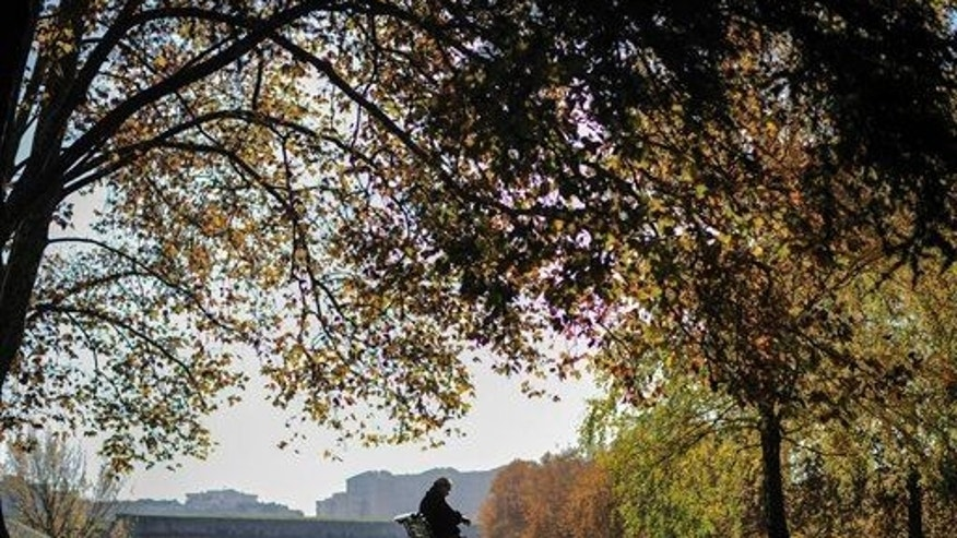 A man rests sitting on a bench at Vuelta del Castillo Park surrounded by autumn leaves, in Pamplona northern Spain, Thursday, Nov. 20, 2014.