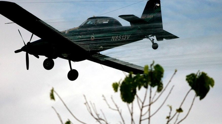 FILE - In this Dec. 15, 2006, file photo, a plane sprays coca fields in San Miguel, on Colombia's southern border with Ecuador. The new labeling on Thursday, March 19, 2015, of the worldâs most-popular weed killer as a likely cause of cancer could jeopardize the future of an aerial spraying program in Colombia that is the cornerstone of the U.S.-backed war on drugs. (AP Photo/William Fernando Martinez,File)