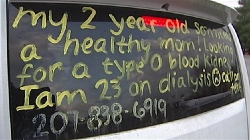 This Nov. 20, 2014 photo provided by WMTW-TV shows the message written by Christine Royles of South Portland, Maine, on the back of her vehicle in which she sought a kidney donor. (AP Photo/WMTW-TV, Kevyn Fowler)