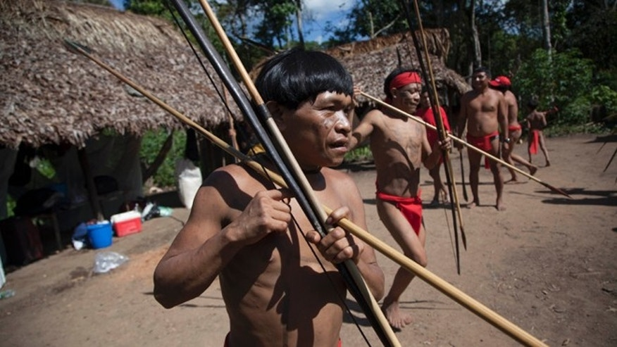 FILE -In this Sept. 7, 2012 file photo, Yanomami Indians dance in their village called Irotatheri in Venezuela's Amazon region. In a remote part of the Venezuelan Amazon, scientists have discovered that members of a village isolated from the modern world have the most diverse colonies of bacteria ever reported living in and on the human body. The microbiome _ the trillions of mostly beneficial bacteria that share our bodies _ plays a critical role in maintaining health. Friday's study raises tantalizing questions about the microbial diversity of our ancestors, and whether todays Western diets and lifestyles strip us of some bugs we might want back. (AP Photo/Ariana Cubillos, File)