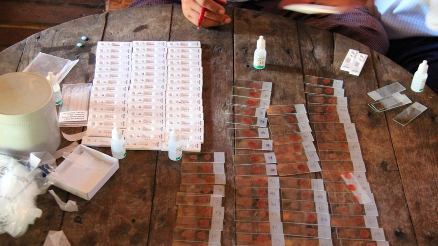 Malaria tests are seen on a table in the Ta Gay Laung village hall in Hpa-An district in Kayin state, south-eastern Myanmar, November 28, 2014. REUTERS/Astrid Zweynert