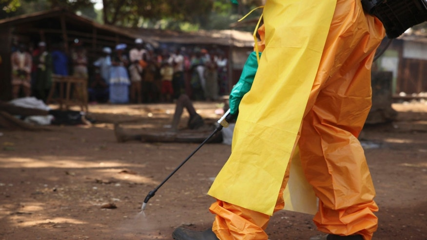 A member of the French Red Cross disinfects the area around a motionless person suspected of carrying the Ebola virus as a crowd gathers in Forecariah January 30, 2015.