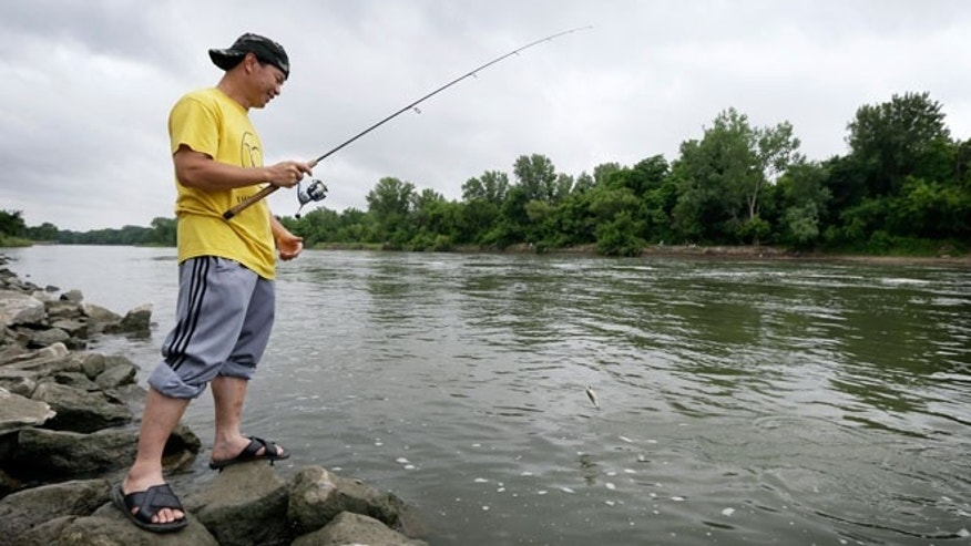 In this photo taken, Monday, June 22, 2015, Boun Lovan, of Des Moines, Iowa, catches a fish below the dam at Saylorville Lake near Des Moines, Iowa. Unlike advisories for other health hazards that are posted on packages and billboards or even quickly read on broadcast ads, the mercury dangers in fish are not communicated directly to anglers. They appear to be largely unknown to those affected the most, the low-income people or immigrants who frequently fish in streams and lakes near urban areas to supplement their diet.