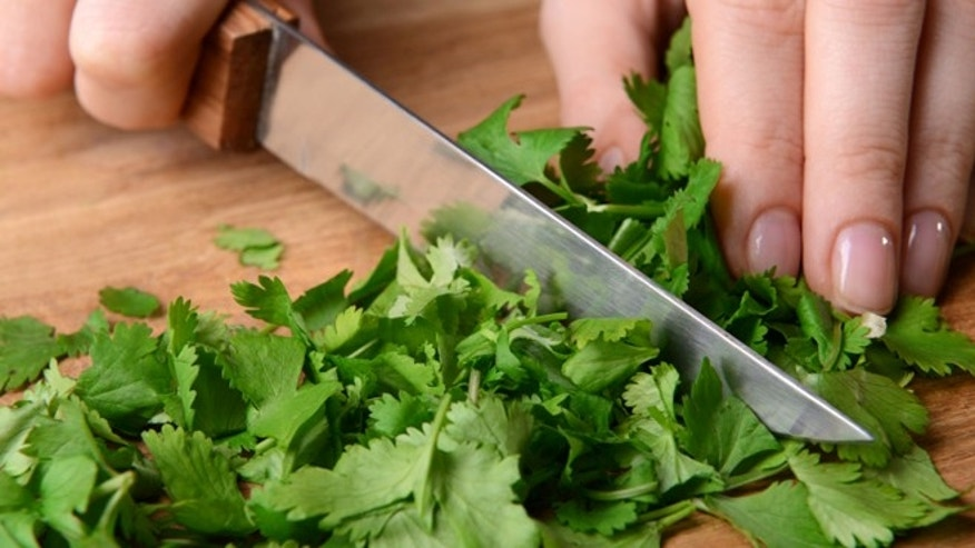 Cilantro is one of the most divisive herbs out there.