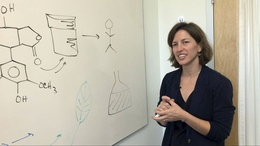 Stanford chemical engineering professor Elizabeth Sattely explains how she produced a common cancer drug in a laboratory plant, in this undated handout picture courtesy of Stanford University. REUTERS/Stanford University/Amy Adams/Handout via Reuters