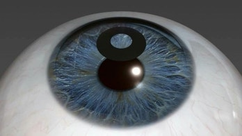 A digital illustration of the KAMRA inlay, which helps correct near-vision loss related to age.
