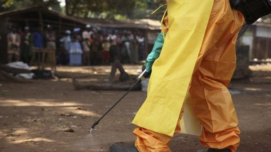 A member of the French Red Cross disinfects the area around a motionless person suspected of carrying the Ebola virus as a crowd gathers in Forecariah January 30, 2015. REUTERS/Misha Hussain