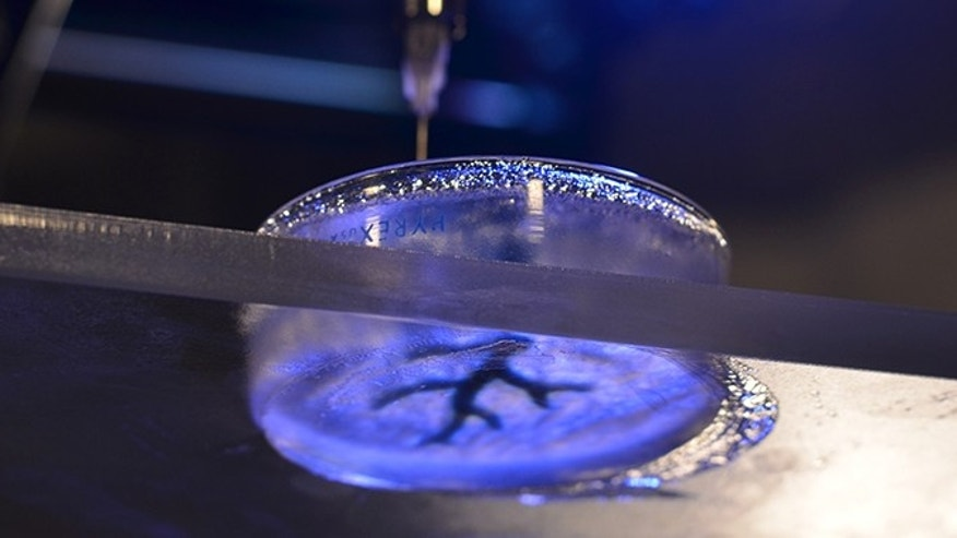 The technique involves filling a petri dish with a semiliquid mixture, dropping a syringe inside and 3-D printing soft material like collagen and fibrin, which are similar to biological components.