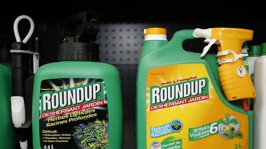 Monsanto's Roundup weedkiller atomizers are displayed for sale at a garden shop at Bonneuil-Sur-Marne near Paris, France, June 16, 2015. REUTERS/Charles Platiau