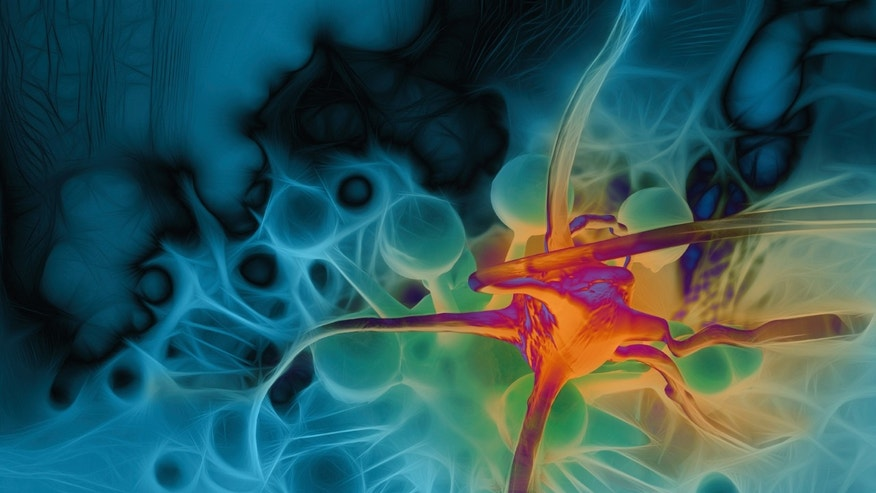 A 3-D rendering shows a cancer cell.