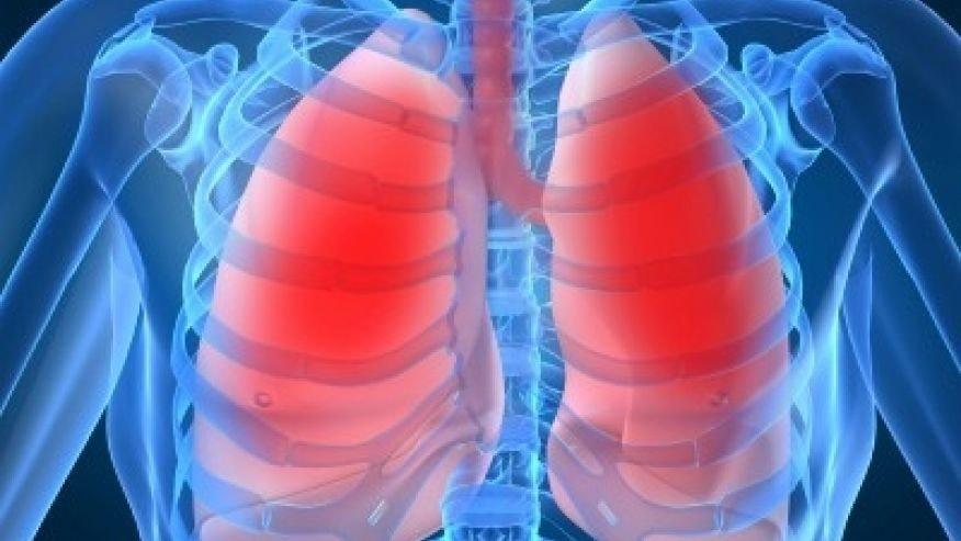lungs istock