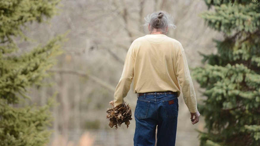 In this photo, Brian Cottle carries leaves. He spent 4 hours carrying leaves from one side of his Pierpont, Mo., yard to the other, an obsessive behavior symptomatic of early onset Alzheimer's.