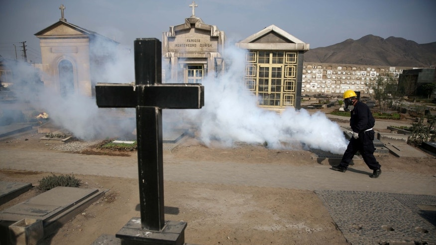 A health worker fumigates to prevent Dengue, Chikunguya and Zika virus, at El Angel cemetery, in Lima, Peru, Wednesday, Jan. 20, 2016. A U.S. warning urging pregnant women to avoid travel to Latin American countries where the mosquito-borne virus is multiplying threatens to depress tourism to the region, one of its few bright spots at a time of deep economic pain. (AP Photo/Martin Mejia)