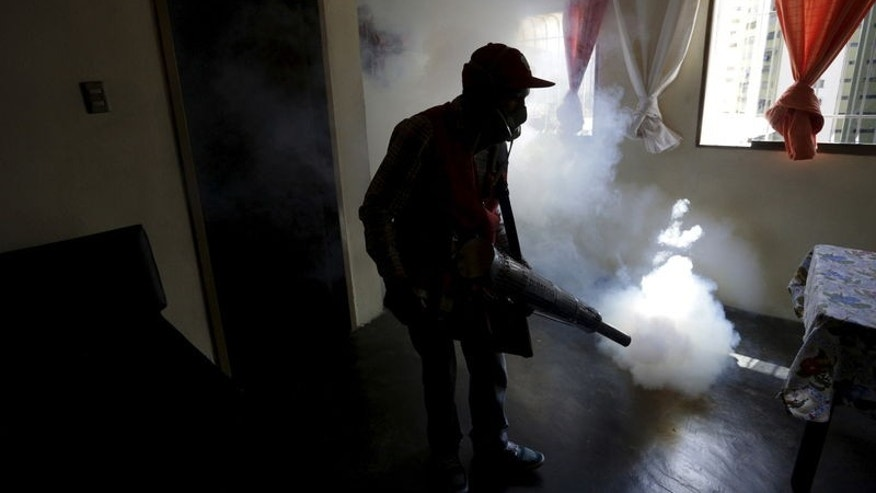 A Venezuelan health worker fumigates inside a house at the Valle slum to help control the spread of the mosquito-borne Zika virus in Caracas, January 28, 2016. REUTERS/Marco Bello