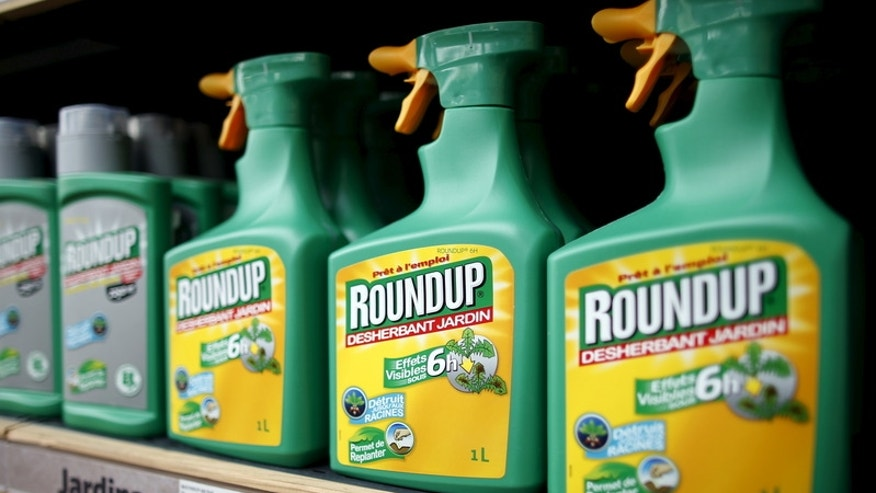 File photo of Monsantos Roundup weedkiller on display at a garden shop at Bonneuil-Sur-Marne