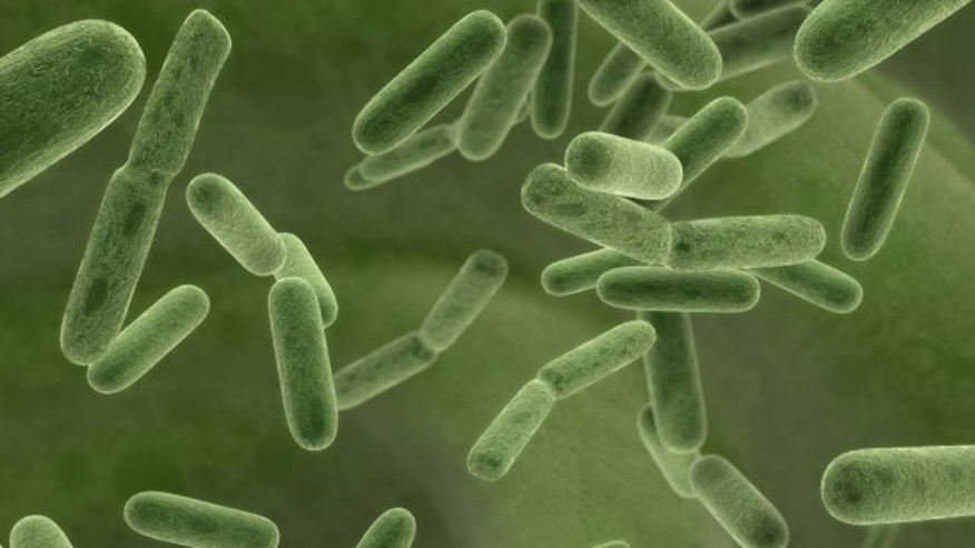 Illinois says five more people with bacterial infection have died