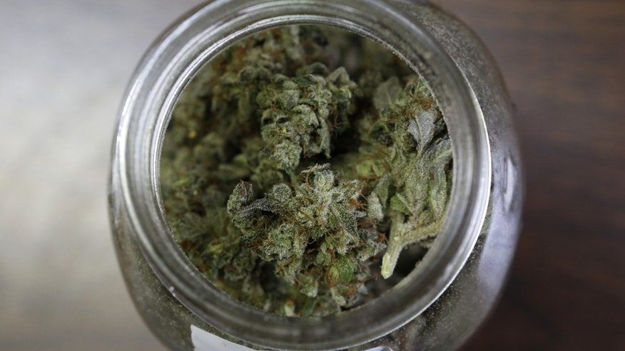 "In this Friday, April 22, 2016 photo, a jar containing a strain of marijuana nicknamed ""Killer D"" is seen at a medical marijuana facility in Unity, Maine. A growing number of health experts and law enforcement officials are making the case that marijuana could help reduce the numbers of overdoses and redirect money into fighting heroin and other opiates. (AP Photo/Robert F. Bukaty)"