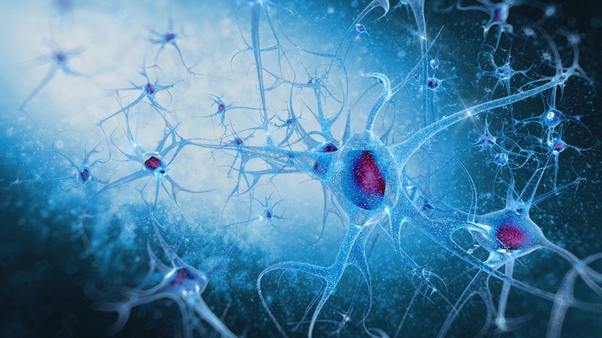 Study links rosacea with increased risk of Alzheimer's disease