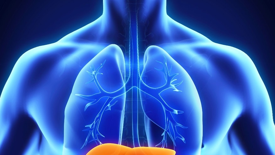 effects on organ donation Facts about organ donation despite continuing efforts at public education, misconceptions and inaccuracies about donation persist learn these facts to better.