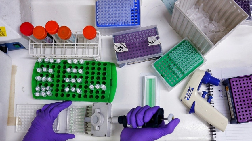 A scientist prepares protein samples for analysis in a lab at the Institute of Cancer Research in Sutton, July 15, 2013. Picture taken July 15, 2013.