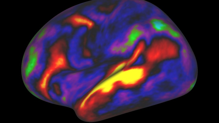 The image shows the pattern of brain activation (red, yellow) and deactivation (blue, green) in the left hemisphere when listening to stories while in the MRI scanner. These results were obtained by the Human Connectome P