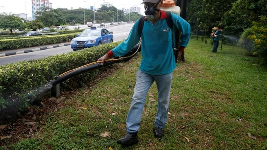 A worker sprays insecticide along the perimeter of a construction site in Singapore